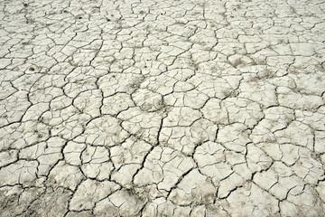 乾いてひび割れた土地