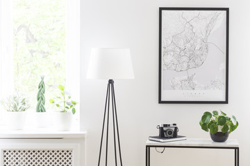 Poster above table with camera and plant next to lamp in living room interior with window. Real photo