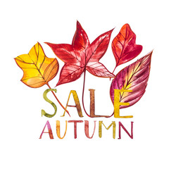 Watercolor autumn foliage watercolor sale banner.