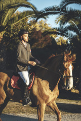Portrait of young handsome horserider riding his brown horse in a palm trees avenue on summer day at sunset