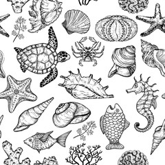 Seamless pattern with sketch of sea shells, fish, corals and turtle. Ocean life