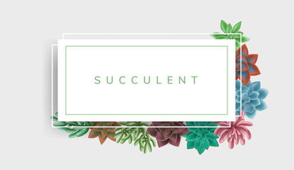 Simple paper frame with colorful succulent plants in green and red colors. Vector illustration for nature design and background