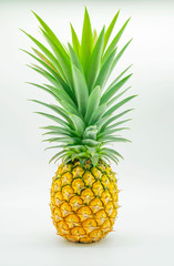 yellow and green pineapple, fruit , isolated on white background .