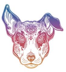 Vintage style Bull terrier in flash art tattoos.