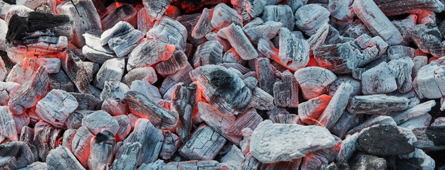 Orange wild fire burning on black coal and ash, prepared for barbecue grill