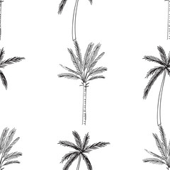Hand-drawn seamless pattern with palm trees, isolated on white background