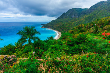 colorful natural wild landscape with rocky mountains overgrown dense green jungle tree, palm and clear azure water of sea ocean