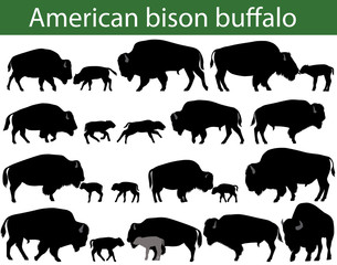 Fototapeta Collection of silhouettes of american bison, or buffalo