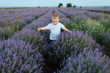 Playful little cute child baby boy walk on purple lavender flower meadow field background, run, have fun, play, enjoy. Excited small kid son. Family day, kids, children, childhood, lifestyle concept.