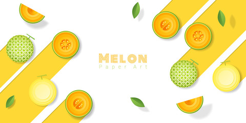 Fresh melon fruit background in paper art style , vector , illustration