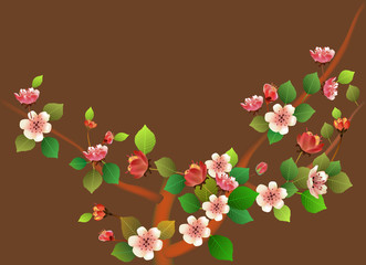 Spring. All wakes up, flowers sakura blossom .
