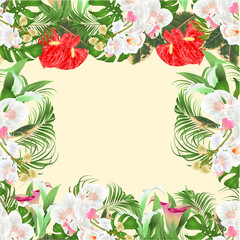 Floral  frame  bouquet with tropical flowers  floral arrangement, with beautiful white orchids ,lili, palm,philodendron  vintage vector illustration  editable hand draw