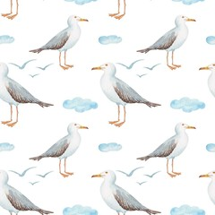 seamless pattern watercolor in marine style bird gull on white background with clouds