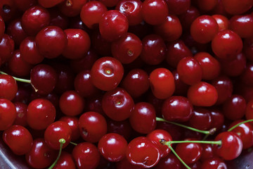 a lot of ripe juicy red cherries