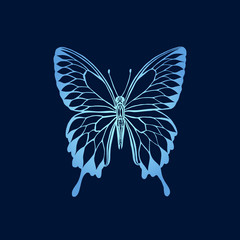 Vector illustration of gradient butterfly on blue background. Butterfly silhouette stencil