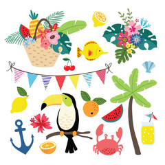 Summer tropical graphic elements. Toucan bird with lemon fruit. Jungle vector floral illustrations, palm leaves. Marine animals. Crab, shell and coral fish. Isolated illustrations, flat design.