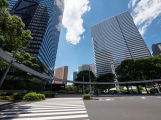 Skyscrapers and Crosswalk