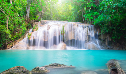 Wall Mural - Waterfall in the tropical forest