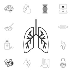Human lungs icon. Simple element illustration. Human lungs symbol design from Medical collection set. Can be used for web and mobile