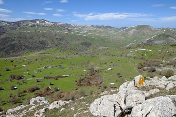 Wall Mural - Vernal Landscape Of Nebrodi Park, Sicily