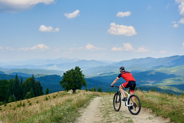 Back view of sportsman cyclist in sportswear and helmet riding cross country bicycle on mountain road. Carpathian mountains view and blue sky on background. Active lifestyle and outdoor sport concept