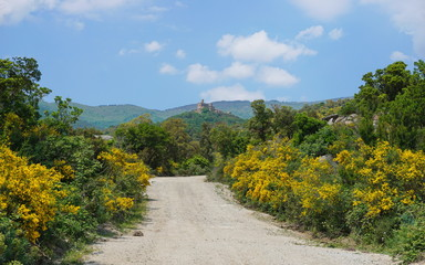 Path with broom plants in bloom leading to the castle of Requesens on the top of the hill, la Jonquera, Alt Emporda, Girona, Catalonia, Spain