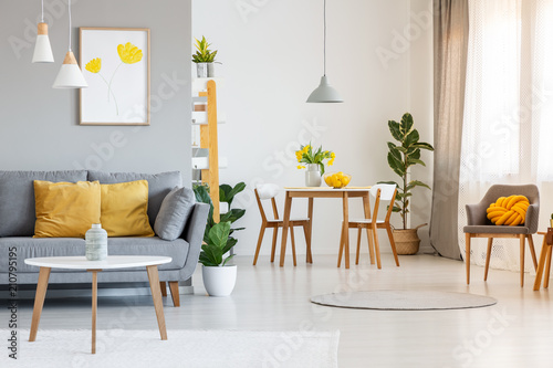 Open Space Living And Dining Room Interior With Gray Sofa Wooden Tables White Chairs