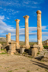 Columns of Djemila, the archaeological zone of the well preserved Berber-Roman ruins in North Africa, Algeria. UNESCO World Heritage Site