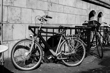 Amsterdam is the bicycle capital of Europe, black-white photo