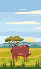 Wild boar cute cartoon style in background savannah Africa, isolated, vector