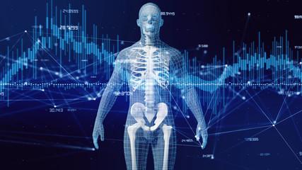 人体とネットワーク