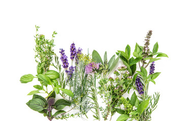Fresh herbs basil rosemary sage thyme mint savory Food background
