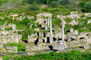 Columns of Hippo Regius, a Phoenician, Berber and Roman city, Annaba Province, Algeria.