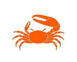 Fiddler crab. Logo. Isolated crab on white background