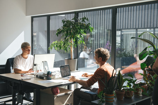 People working in sunny modern office