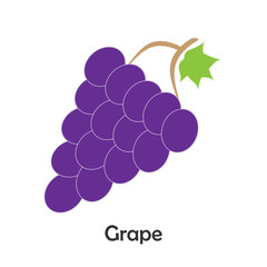 Grape in cartoon style, card with fruit for kid, preschool activity for children, vector illustration