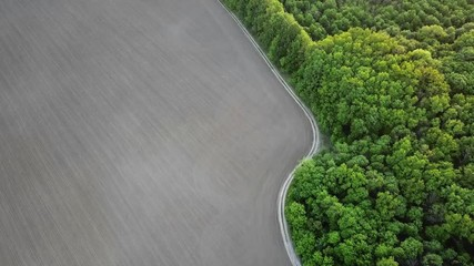 Wall Mural - Aerial panoramic video from the drone to the forest with green spaces and agricultural field with the road dividing them at sunset in the summer evening, 4K resolution video.