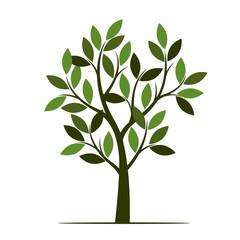 Green summer Tree. Vector Illustration.