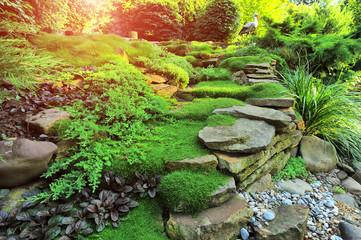 Beautiful view on cute backyard in sunny day, fresh green grass lawn in sunlight, landscaping in the garden Wall mural