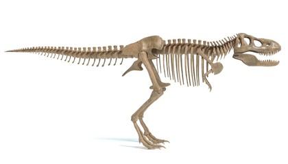 3d illustration of a t-rex skeleton