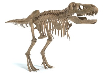 3d illustration of a tyrannosaurus rex skeleton