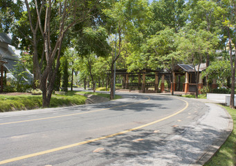 Road in the park background