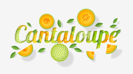 Word cantaloupe design decorated with cantaloupe melon fruits and leaves in paper art style , vector , illustration