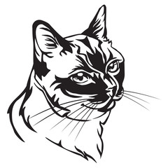 Decorative portrait of Thai Cat vector illustration