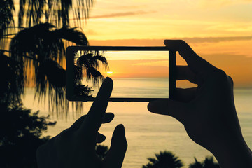 A female's hands take a picture of silhouette of palm trees and Atlantic sea on La Gomera island on mobile phone. Canary Islands at sunset