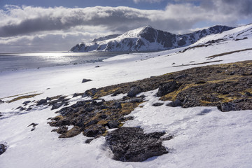 Arctic scenery with snow covered coastline, Spitsbergen, Svalbard and Jan Mayen, Norway