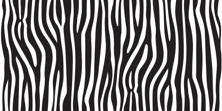 stripe animal jungle texture zebra vector black white print background seamless repeat