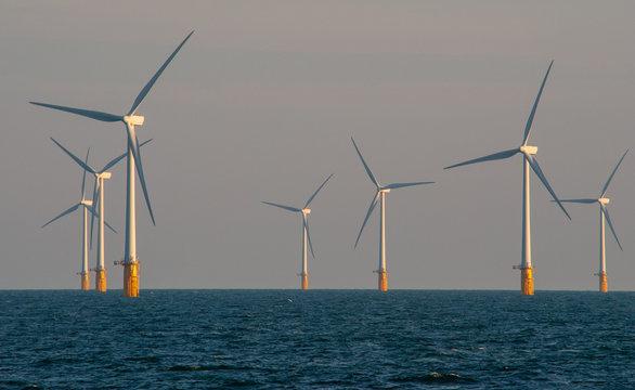 Offshore wind farm, Thames estuary.