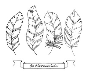 Set of hand drawn sketch doodle feathers isolated on a white background. Trendy boho chic. Elements for hipster background, logotype, tattoo design element, tribal templates, scrap-booking.