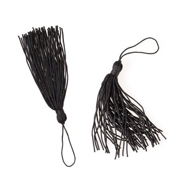 Silk tassels isolated on white background for creating graphic concepts